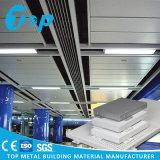 内部の天井および壁の装飾のためのアルミニウム単一の固体パネル