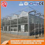 Multi-Überspannung Stahlrahmen-Aluminiumprofil PC Blatt-Gewächshaus für Gemüse