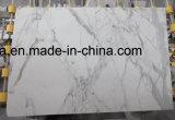 En marbre blanc poli Calacutta Gold les plaques de marbre italien