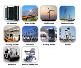 batteria solare del ciclo profondo 12V100ah