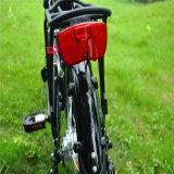 電気バイクの自転車36V 250Wを折る中国20inchグリーン電力