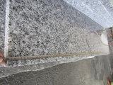 Granito grigio orientale di Grey G640, pietra per lastricati del granito