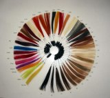 Wigs Human Hair Extensions를 위한 색깔 Ring/Color Chart