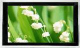 42 polegadas LCD Netwok HXADP-42001AD Player (n)