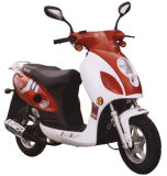 Scooter (ZX50QT-12)