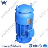 Вертикальный асинхронный двигатель Пол-Вала (IP23/IP54)
