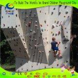 Herrliche Befestigung zur Gebäude-Fiberglas-Felsen-Kletternwand