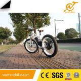 vélo électrique de la ville 1000W verte chinoise gros avec l'écran LCD