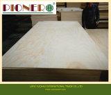Fsc y el carb para los muebles de madera contrachapada de pino