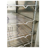 Congelador del choque de ráfaga de IQF para la fruta/el vehículo/la carne