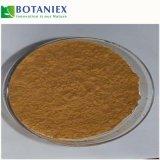 Estratto naturale del foglio del Epimedium degli ingredienti 20% Icariin