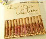 Kylie neemt me op Vloeibare Lippenstift 12 van de Steen van de Vakantie Reeks van de Lipgloss van de Kleur de Kosmetische