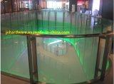 En acier inoxydable de balustrades en verre