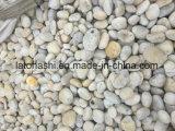 Formato naturale 2-3cm /3-5cm /5-8cm della pietra del ciottolo del fiume bianco per modific il terrenoare