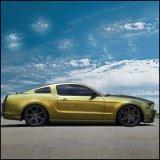자연적인 돌비늘 차 페인트를 위한 황금 진주 안료