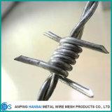 China-Galvano galvanisierter Stacheldraht für Zaun