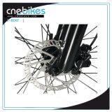 bicicleta gorda elétrica do pneu de 500W-1000W 26inch para Brach e neve