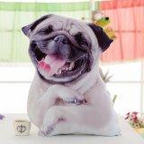 هبة أثاث لازم بيتيّة يحشى دمية لعبة دبّ كلب قطيفة حيوان