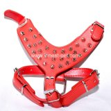 Pet Product Supply Leather Dog Walking Harness