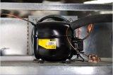 Congelador comercial de la cocina del refrigerador para el restaurante y el hotel usados