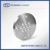 l'acciaio inossidabile ha forgiato la flangia di piatto (PY0141)