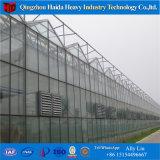 Plastikbogen-Gewächshaus vom Berufsgewächshaus Hidroponica Hersteller