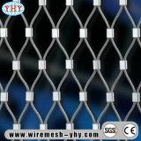 Rede do jardim zoológico da corda de fio do aço inoxidável de China