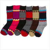 Helle Retro Farben-Kursteilnehmer-Form-Kleid-Socke
