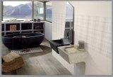 Foshan 300900 3D Waterdichte Steen van Inkjet beëindigt de Binnenlandse Ceramiektegel van de Muur voor Eetkamer (CP319)