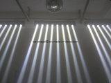 [كر] [10و] بيضاء [لد] حزمة موجية خطّيّ متحرّك رئيسيّة قضيب غسل [ستج فّكت] أضواء