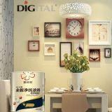 Protección de pintura para pared Mejor Calidad de pintura de pared interior de Asia