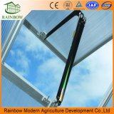 Dach-Ventilations-System für Gewächshaus