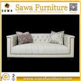 Sofá moderno del apartamento de la tela con el sofá del Special de la calesa