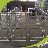 Parada durable galvanizada de la gestación de la INMERSIÓN caliente para las ventas del cerdo