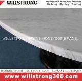 Het Comité Ahp van de Honingraat van het Aluminium van Willstrong voor de Bekleding van de Muur