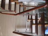 Escadaria Cantilevered de flutuação com as escadas do passo da madeira de carvalho vermelho