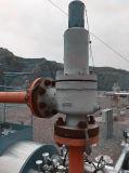 Deutschland-Standard-LÄRM Flansch-Enden-hilfsgesteuertes federgelagertes Druck-Sicherheits-Sicherheitsventil