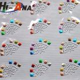 Il nostro trasferimento di Hotfix del Rhinestone di colori di Years'experience delle fabbriche 20 vario