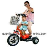 Three&Nbsp; 짐수레꾼 또는 Electric&Nbsp; 자전거 또는 스쿠터 또는 자전거 또는 Electric&Nbsp; 기관자전차 또는 기관자전차 또는 Electric&Nbsp; Bicycle/RC&Nbsp; 차