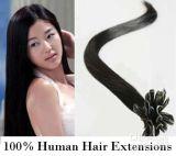 100% 사람의 모발 온난한 브라운 융해 머리 연장 (PPG-l-01542)