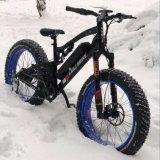 58.8V 1000Wによって連動させられるモーター電気脂肪質のタイヤのバイクの雪Ebike