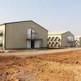 Construction préfabriquée de ferme de poulet dans la Chambre de volaille avec le modèle moderne