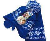 OEM van de Fabriek van China de Opbrengst Aangepaste Geplaatste Handschoenen van de Sjaal van Beanie van de Jacquard van het Embleem Acryl Gebreide