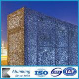 Resistente al calor y la insonorización del panel de espuma de aluminio Material de construcción y decoración.