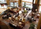 Hotel al aire libre moderno de la barra de los muebles del restaurante del jardín que cena la silla
