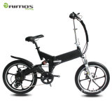 bici eléctrica de 250W 350W plegable el neumático Bicicleta Electrica de la rueda del mag