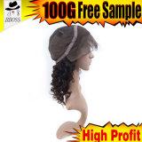 Perruques de cheveu de prix usine avant brésilien de perruques de lacet