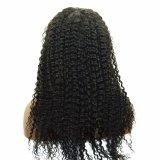 파인애플 파 Malaysian 머리 싼 자유로운 부속 흑인 여성을%s 가득 차있는 레이스 가발