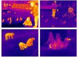De Kleine Thermische Camera's van Xtherm T3s voor Smartphone met 384X288- Resolutie