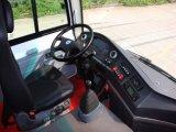 Omnibus de lujo Slk6750 del coche 2017